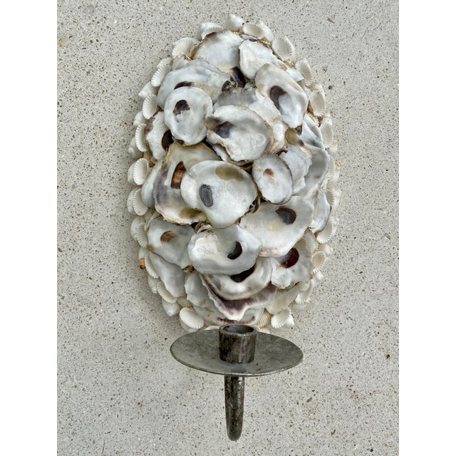 Oly Studio Oyster Shell Candle Wall Sconces - a Pair For Sale - Image 10 of 13