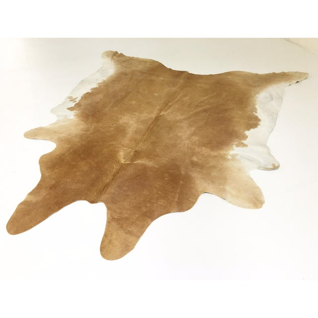 Cowhides are produced in many countries, but it is universally known that the finest hair-on cowhides come from Brazil....