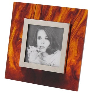 Studio Silva Italy Tortoise Shell Lucite and Chrome Picture Photo Frame For Sale