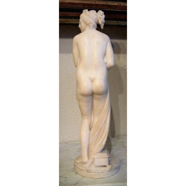 Marble 19c Italian Marble Figurine of Venus For Sale - Image 7 of 8