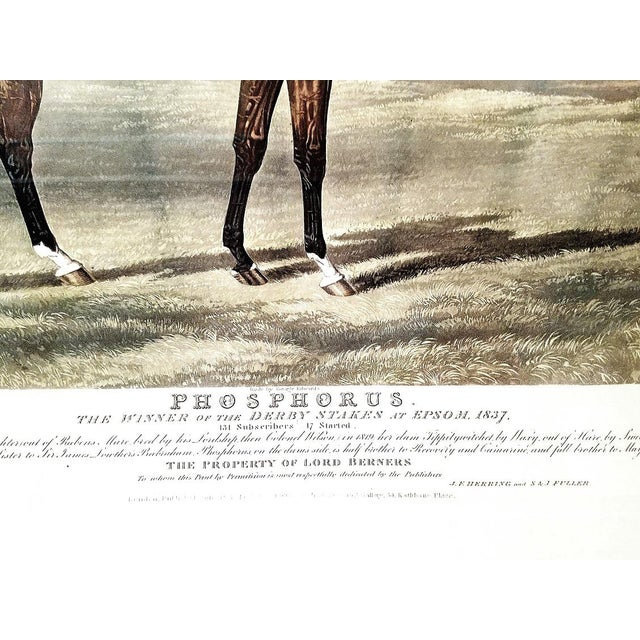 Mid 19th Century 19th C. Engraving of Phosphorus by Jf Herring Snr For Sale - Image 5 of 10