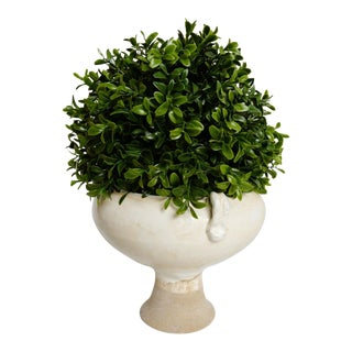 Faux Boxwood & White Milk Pottery For Sale