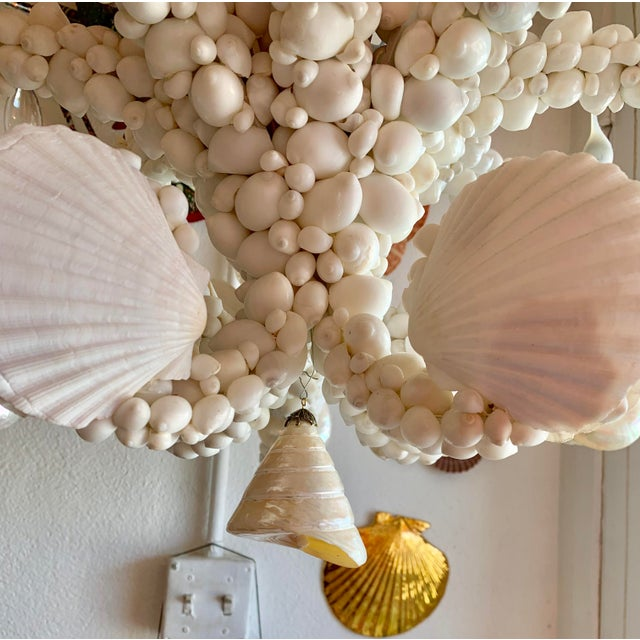 White Large 8-Light Shell Chandelier For Sale - Image 8 of 9