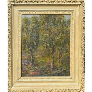 Early 19th C. Monterey Eucalyptus by Dedrick Stuber For Sale
