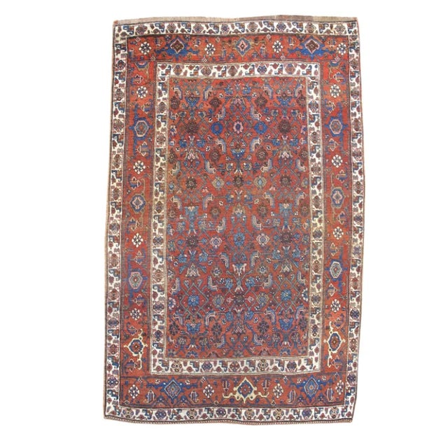 Bidjar Wool Rug - 3′9″ × 6′3″ Collection of Jerry and Kaye Thompson
