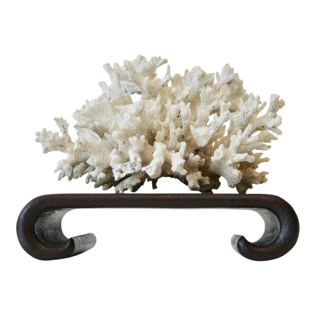 Natural Coral Specimen on Asian Style Curved Wood Stand - Image 1 of 3