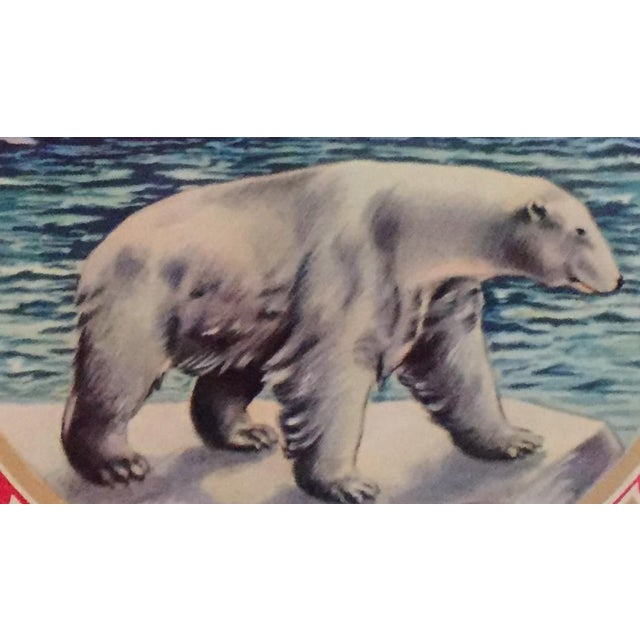 1930s Vintage Spanish Polar Bear Label For Sale - Image 4 of 4