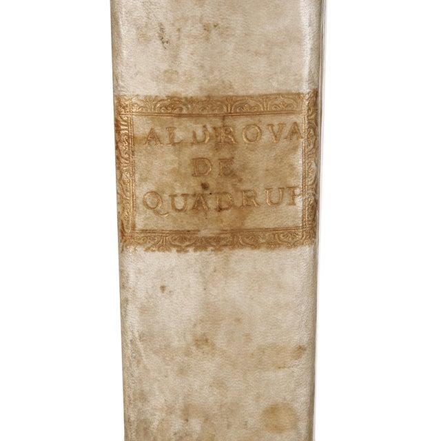 Title: De Quadrupedibus Solidipedibus, Volumen Integrum Ioannes Cornelius Uterverius Author: Aldrovandi, Ulisse....