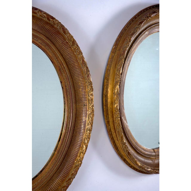 Gesso Near Pair 19th Century Carved Gilt Wood and Gesso Mirrors For Sale - Image 7 of 8