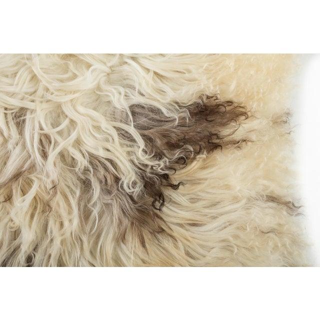 "2010s 2010's Modern Natural Sheepskin Pelt Rug - 2'0""x3'5"" For Sale - Image 5 of 6"
