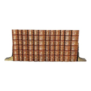 Antique Latin & Greek Classics Leather Books - Set of 12 For Sale
