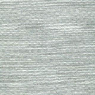 Sample - Schumacher Haruki Sisal Wallpaper in Robin's Egg For Sale