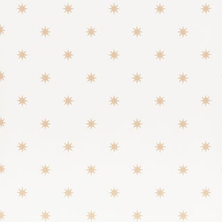 Sample - Schumacher Stargaze Wallpaper in Bronze For Sale