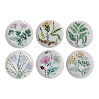 1980's Horchow Herb and Seeds Botanical Dessert/ Salad Plates - Set of 6 For Sale