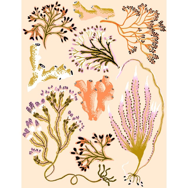 Seaweed Botanica (Sand) Giclee Print by Sarah Gordon For Sale