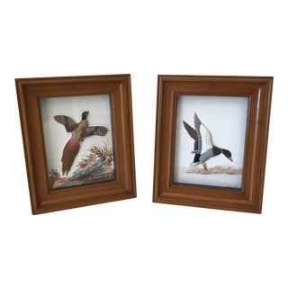 Vintage J. Q. Whippel's Landing Mallard and Fleeing Pheasant Diorama Shadow Box's For Sale