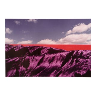 "Michael DeCamp, ""Purple Majesty,"" Photograph For Sale"