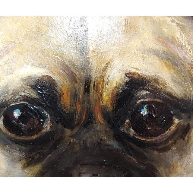 1930s Portrait of a Cute Pug -English School Oil Painting For Sale - Image 5 of 8