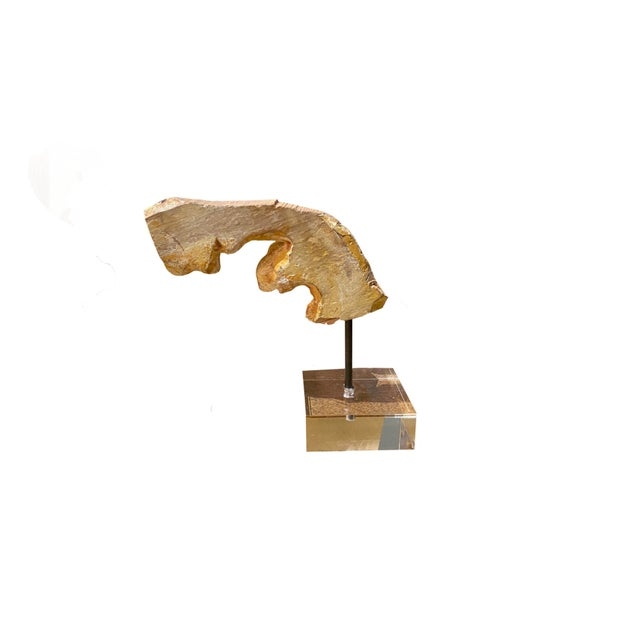 19th Century French Gilt Wood Carved Fragment on Lucite For Sale - Image 5 of 6