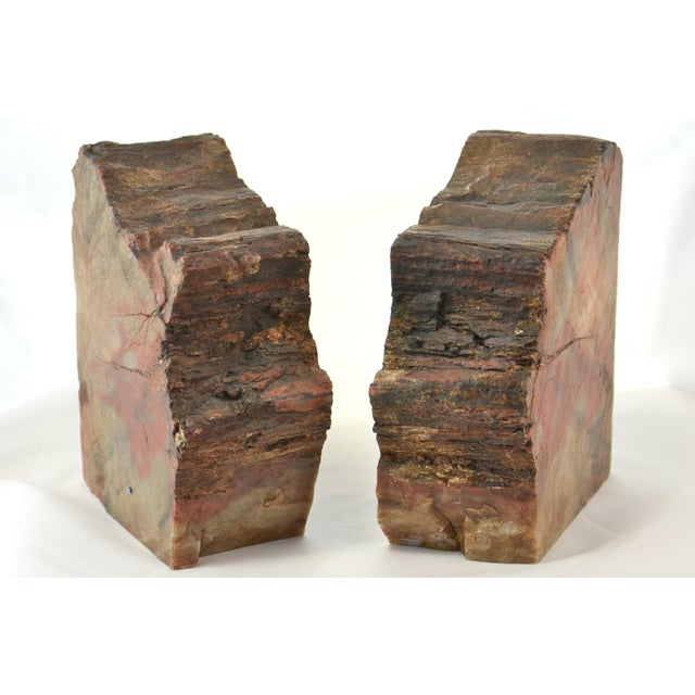 Iron Red Petrified Wood Slice Bookends - A Pair For Sale - Image 4 of 8