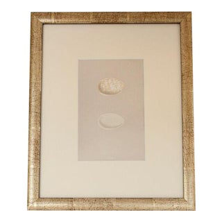 Morris 1870's English Egg Lithograph For Sale