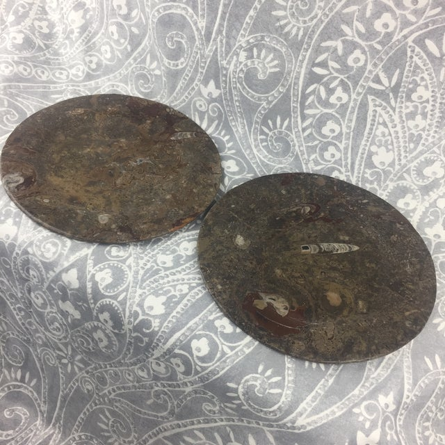 Red Orthoceras Red Brown Fossil Stone Plates- a Pair For Sale - Image 8 of 12