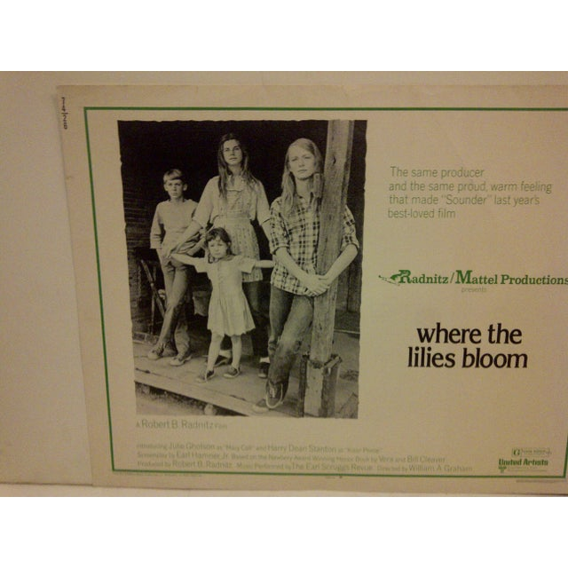 """Americana """"Where the Lilies Bloom"""" 1974 Vintage Movie Poster For Sale - Image 3 of 5"""