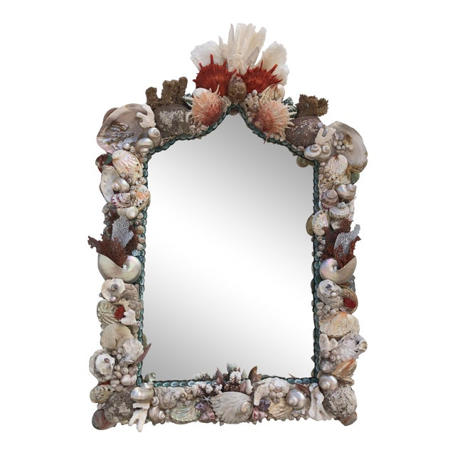 Organic Modern Seashell and Coral Mirror For Sale