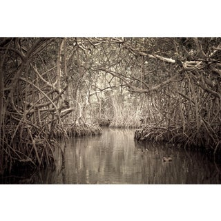 """Waterways 2"" Photography For Sale"