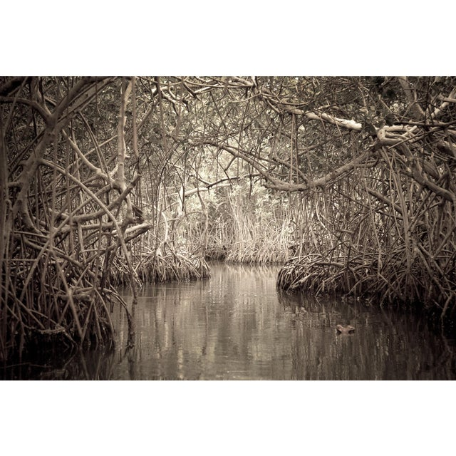 """""""Waterways 2"""" Photography For Sale"""
