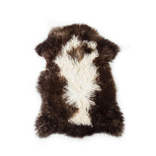 """Contemporary Long Wool Sheepskin Pelt, Handmade Rug - 2'0""""x3'0"""" For Sale In Chicago - Image 6 of 6"""