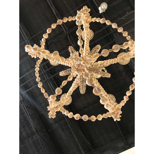 Nautical Vintage Seashell Shell Encrusted 5 Light Chandelier For Sale - Image 3 of 10