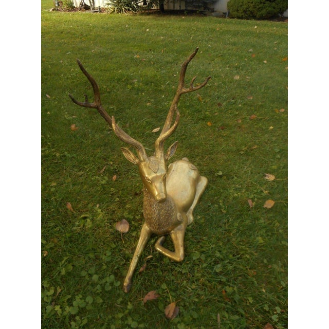 Mid-Century Stag Deer Brass Statue - Image 5 of 8
