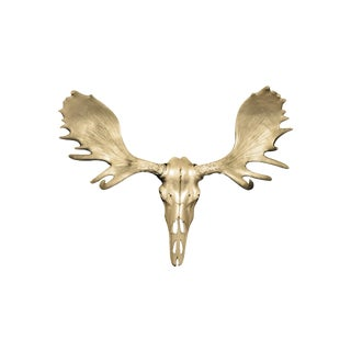 Wall Charmers Alberta Faux Gold Resin Moose Head Skull