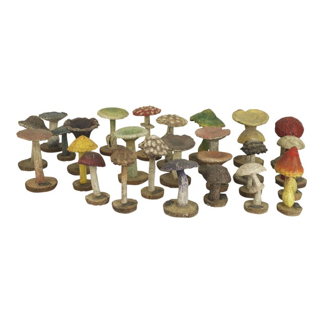 Enlarged Models Of A Variety Of Wild Mushrooms- Set of 19 For Sale