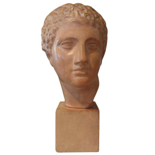 Tan 1920s Vintage French Classical Male Terra Cotta Bust Sculpture For Sale - Image 8 of 8