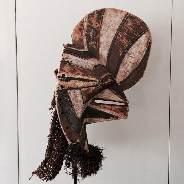 """Songye Kifwebe """"Police"""" Tribal Mask - Image 4 of 4"""