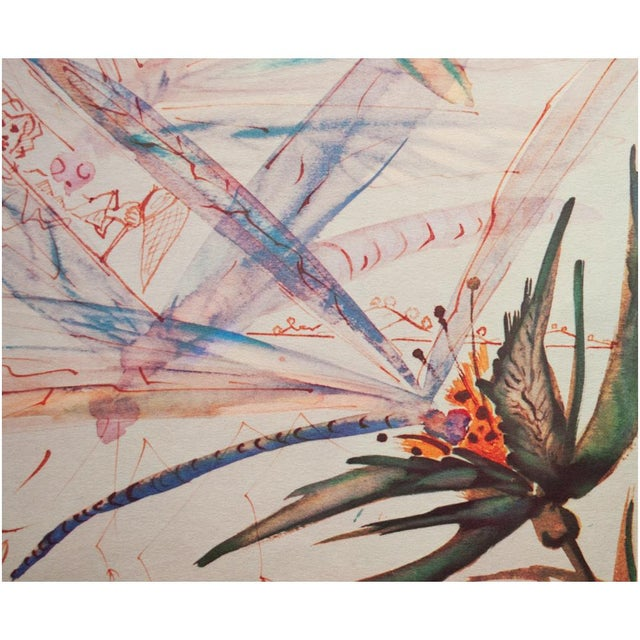 XL 1954 Dali, Dragonflies Original Period Lithograph From From the Mrs. Albert D. Lasker Collection For Sale In Dallas - Image 6 of 13