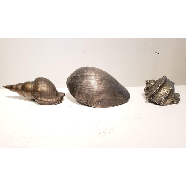 Large Vintage Italian Silvered Bronze Seashells- Set of 3 For Sale - Image 11 of 12