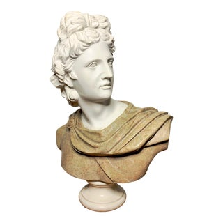 Italian Marble Bust of Appollo Belvedere For Sale
