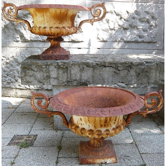 Matching Pair of 19th C French Medici Cast Iron Jardineres With Scroll Arms For Sale In New Orleans - Image 6 of 7