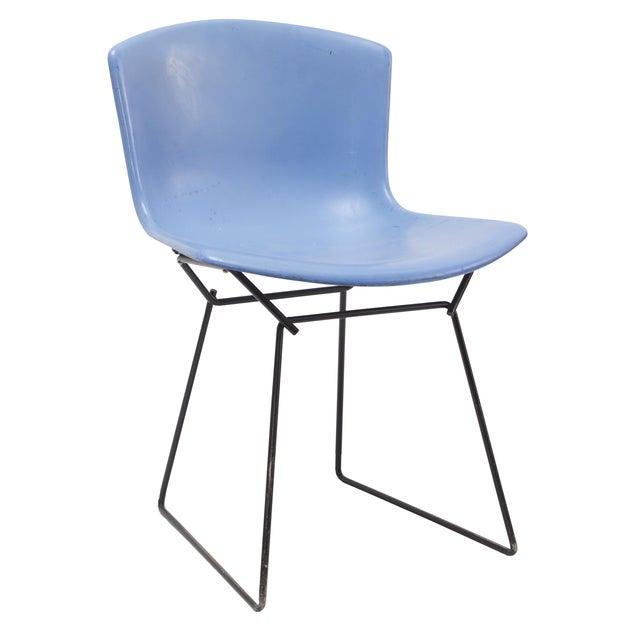 Knoll Bertoia Fiberglass Side Chair Blue - Image 1 of 11