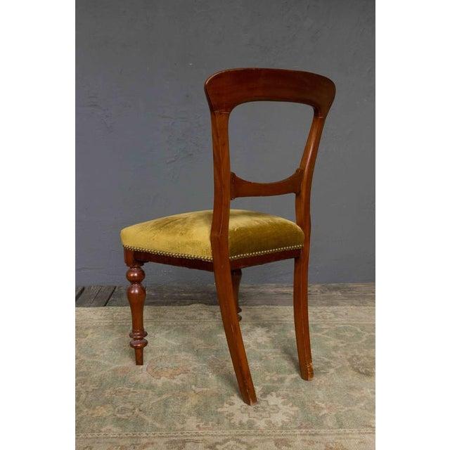Single Mahogany Side Chair, William IV English - Image 5 of 11