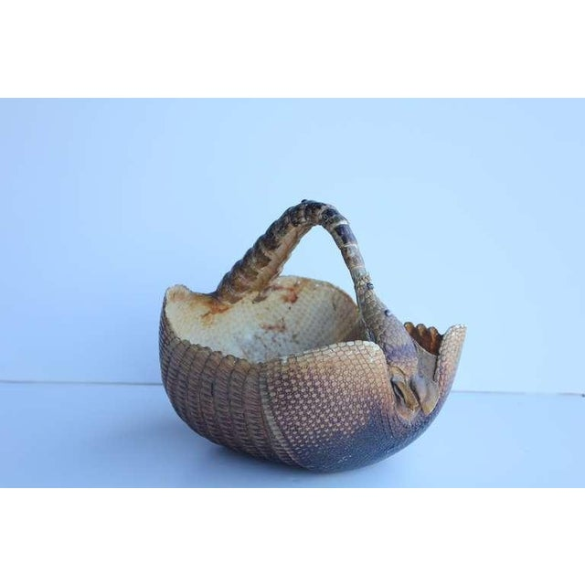 1940's original basket made of armadillo. This piece would be great as a planter too.
