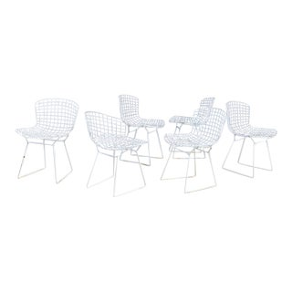 Authentic Early Knoll Productions Harry Bertoia White Wire Chairs - Set of 6 For Sale