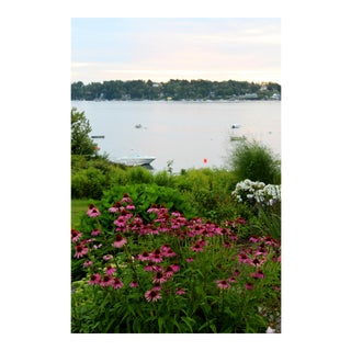 Photograph of Maine Ocean Wildflowers by Josh Moulton For Sale