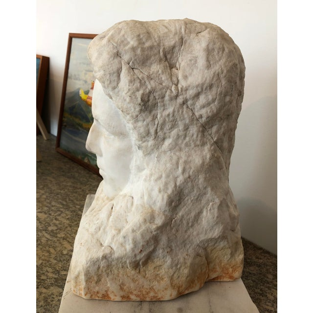 Early 20th century raw and polished marble carved head. Finely detailed From a garden in Albermarle County, Virginia.