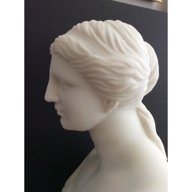 Figurative 19th Century Venus De Milo Marble Bust For Sale - Image 3 of 12