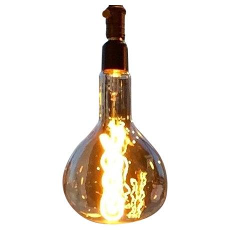 Oversized Beaker Shaped Edison Bulb - Image 1 of 3