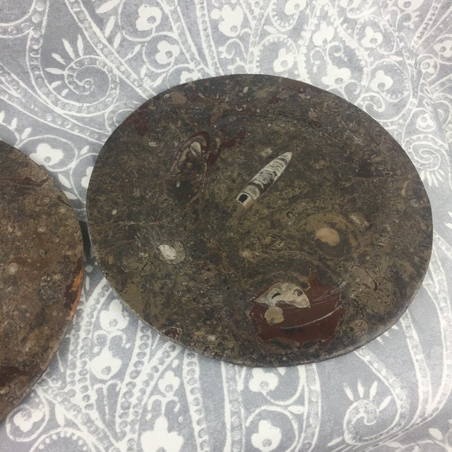 Boho Chic Orthoceras Red Brown Fossil Stone Plates- a Pair For Sale - Image 3 of 12